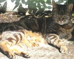 Me with my tum in the sun.